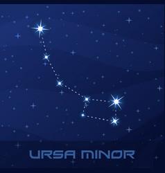 constellation ursa minor little bear vector image