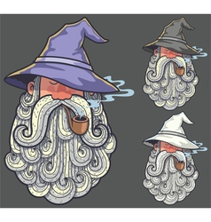 Wizard Portrait 2 vector image