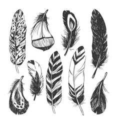 Feather set in native american indian style vector
