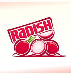logo for radish vector image
