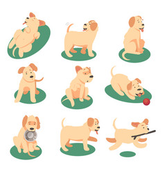cute dog playing with vector image