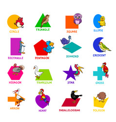 Geometric shapes with bird characters set vector