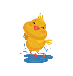 Little yellow chicken in a puddle vector