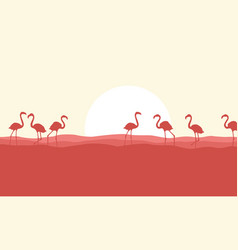many flamingo scene silhouette style vector image