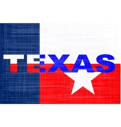 the state of texas grunge background vector image