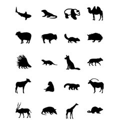 Animal icons 3 vector