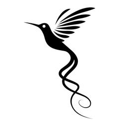 Hummingbird tattoo vector