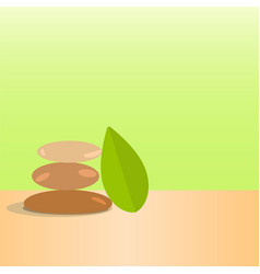 sbeautiful stones and green leaves spa vector image