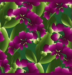 blooming orchid colorful seamless pattern vector image