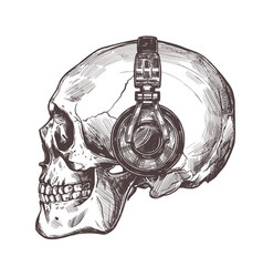 human skull with headphone in profile vector image