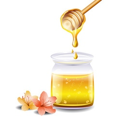 Jar Full of Honey Cartoon vector