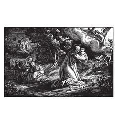 Jesus prays in the garden of gethsemane - peter vector