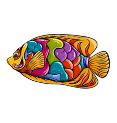 Regal angel fish entangle with colorful body vector