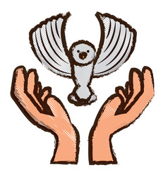 dove in a hands vector image