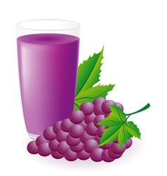 Blue grape juice vector