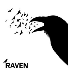 Croaking crow or raven for wall vector