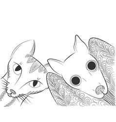 doodle bat and cat head vector image