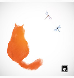 Fluffy red cat watching two dragonflies vector