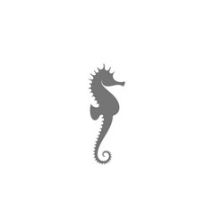 sea horse vector image