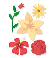 set of flowers cartoons vector image
