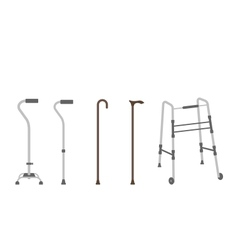 set of senior walking sticks vector image