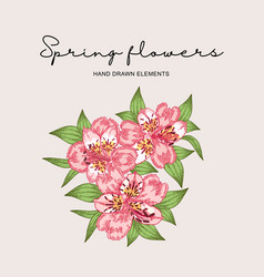 Spring flowers composition hand drawn vector