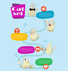 cat infographics vector image