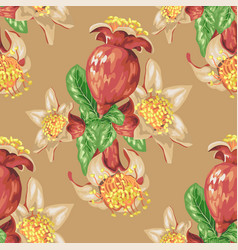 Blooming fruit flower of pomegranate tree in vector