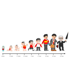 Complete life cycle person39s life from vector