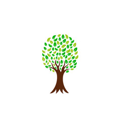 green nature tree logo vector image