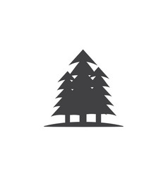 pine tree icon design template isolated vector image