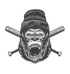 Vintage angry gorilla head in beanie hat vector