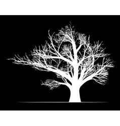 Big white tree on black background vector image vector image