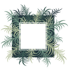 botanical card with palm leaves image vector image