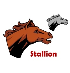 Brown cartoon horse stallion character vector