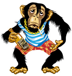 Cartoon drunk chimp sailor vector