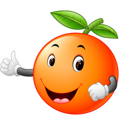 Cute orange with face vector