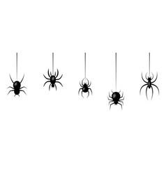 halloween spiders hanging on web vector image