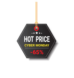 hot price tag cyber monday sale icon isolated vector image