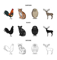 Rooster tiger deer owl and other animals vector