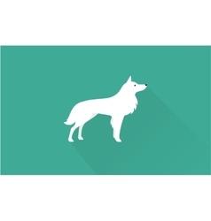 Samoyed icon vector