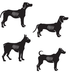 Silhouette extremely skinny dogs vector
