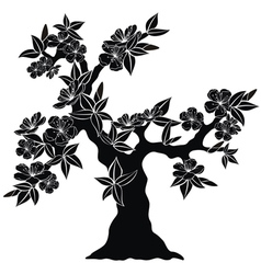 silhouette of spring tree vector image