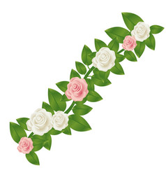 colorful crown of leaves with roses floral design vector image