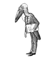 bird man with a marabou head lawyer in a classic vector image