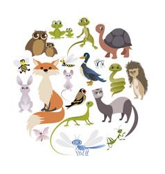 Circle of cute animals mammals amphibians vector