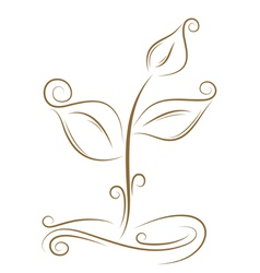 floral sprout sketch vector image
