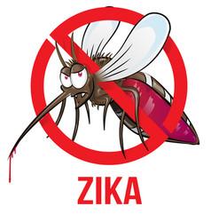 Mosquito zika vector