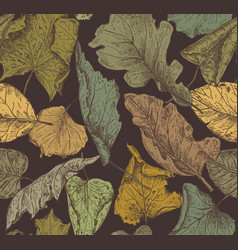 seamless pattern with hand drawn dry autumn vector image