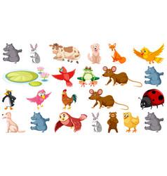 Set different animals vector